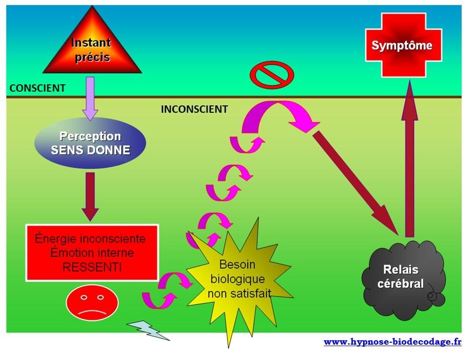 Therapeute-Biodecodage